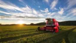 KUS Combine Harvester in Sunset Light